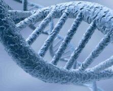 14 Septembre : Notre acide désoxyribonucléique est en mutation?